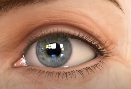 Close up of a female eye.
